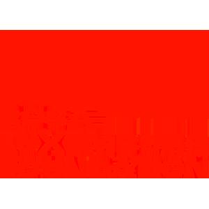 Rosa Luxemburg Foundation